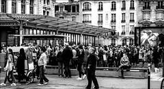 La foule pour Degas...  / Crowd for Degas... (vedebe) Tags: ville city rue street urbain urban musée foule humain human people paris noiretblanc netb nb bw touristes société art