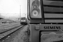 domo II set 79 #37 (train_spotting) Tags: beuracardezza domoii vectronms vectron bls bernlotschbergsimplon blscargoag hupac captrain re1934974dsieag siemens siemensmobility lenord ferrovienordmilano nordcargo dbcargoitaliasrl traxxf140dc e4831018inc bombardier nikond7100