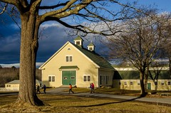 Heading Home (Bud in Wells, Maine) Tags: laudholmfarm wellsreserve barn goldenhour light shadows tree visitors winter fence trees htmt