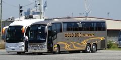 BS02RQ,BS04BS (damoN475photos) Tags: bs02rq dyson group 973 scania k400eb irizar i63900 donric gold bus k440eb century 3900 extv6847nsweagletours alexandria nsw vline train replacement west melbourne 2019
