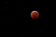 Eclipse Maximum (wjshawiii) Tags: 2019 bloodmoon lunar lunareclipse moon supermoon totallunareclipse wolfmoon