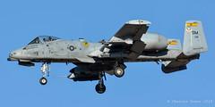 A-10C 80-0181/DM 357th FS/ 355th Wg (C.Dover) Tags: 800181 davismonthanafb warthog a10c 800181dm 355thfw dm fairchildrepublic 357thfs thunderboltii usaf