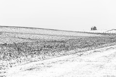 """een moment van ... "" (B.Graulus) Tags: photography landscape winter snow fields huldenberg flanders belgium monochrome canon mono photo"
