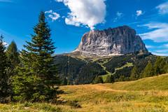 Dolomiti (BZ) (Ondablv) Tags: alpino nova levante bolzano alto adige bosco abeti massiccio ondablv alberi trentino dolomiti