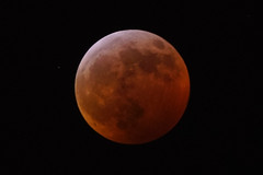 Lunar Eclipse (Roger Inman) Tags: moon linear total eclipse wolfmoon bloodmoon