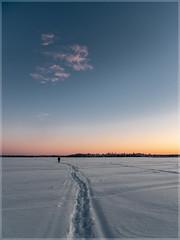 Ylläs_92974 (uwe_cani) Tags: panasonic g9 finnland finland skandinavien scandinavia lappland lapland ylläs winter schnee snow natur nature outdoor landschaft landscape wolken clouds bäume trees himmel sky sonne sun sonnenuntergang sunset gegenlicht backlight