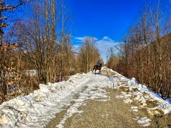 Horse and rider on a hiking path along the river Inn near Oberaudorf, Bavaria, Germany (UweBKK (α 77 on )) Tags: horse rider winter snow ice cold blue sky tree river inn walk hike path oberaudorf bavaria bayern germany deutschland europe europa iphone
