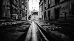 Ascensor da Glória #1 (Hendrik Lohmann) Tags: streetphotography street tram ascensor da glória lisboa lissabon lisbon portugal city urban urbanart urbanlife blackandwhite bwstreet bnw bw nikon nikondf nikonphotographer people series