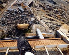 Scan27_Pasterze (SmoKingTiger1551) Tags: austria grosglockner pasterze glacier ice mountains rocks alps hoch tauern marmot murmel hitchhiking analog landscape