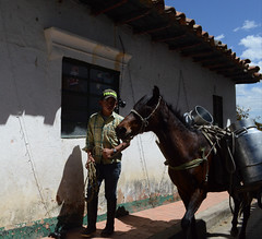 (Assholelori) Tags: streetportratit horse colombia life cotidianity photography nikon3200 flickr photos street kid photosflickr made love