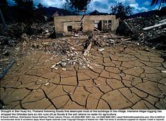 Cracked Earth 1 (hoffman) Tags: asia climatechange crack cracked devastation disaster drought earth flood horizontal housing logging thailand wreckage 181112patchingsetforimagerights nakonsithammarat
