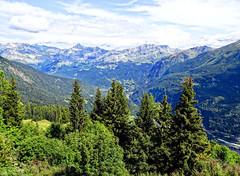 Massif du Mont Blanc (Manon Ridet) Tags: montagne alpes mountain hautesavoie savoie rhônealpes randonnée arbre fôret france paysage landscape leshouches chamonix montblanc