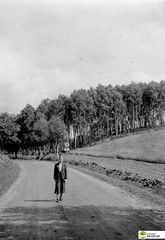 tm_6350 (Tidaholms Museum) Tags: svartvit positiv grusväg landsväg vägmärke kvinna woman