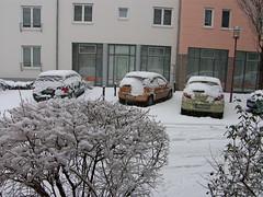 Winter vor dem Haus (Seesturm) Tags: 2019 seesturm winter autumn park schnee snow fenster blick blicke freital sachsen saxony deutschland germany