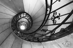 #escaleras #stairs #arquitectura #architecture #budapest #hungría #paisaje #landscape #shadow #reflexes #blancoynegro #blackandwhite #contraluz #backlight #photoshoot #shoot #shooting #photography #photographer #MiFotoDR #inspiredbycolour #sonyimages #son (Manuela Aguadero PHOTOGRAPHY) Tags: mifotodr sonyα6000 arquitectura shadow manuelaaguaderophotography sonyalpha stairs backlight shooting sonyimages blancoynegro inspiredbycolour reflexes sony6000 blackandwhite sonyalphasclub shoot photographer paisaje architecture escaleras sonya6000 hungría sonystas budapest contraluz sonyalpha6000 landscape photoshoot photography