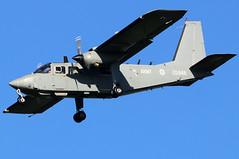 ZG848_01 (GH@BHD) Tags: zg848 britten norman bn2t islander islanderal1 armyaircorps bfs egaa belfastinternationalairport brittennorman aac military aircraft aviation