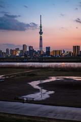 晴空塔|Skytree (里卡豆) Tags: katsushika tōkyōto 日本 jp olympus 25mm f12 pro olympus25mmf12pro olympusepl9 epl9 tokyo tokyocity skytree