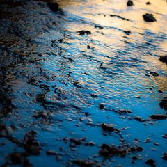 In Canyons 321 (noahbw) Tags: d5000 dof grandstaircaseescalantenationalmonument nikon utah williscreek abstract autumn blur canyon creek depthoffield desert light natural noahbw quiet reflection ripples silhouette slotcanyon square still stillness stone water