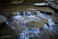 The Fall Before the Falls v2 (Aaron Hufnagel) Tags: nikon nikond600 d600 tokina tokina2870mm tokinaatx atx 2870mm madison madisonindiana cliftyfalls cliftyfallsstatepark indianastatepark statepark nature outdoor water creek stream waterfalls falls landscape