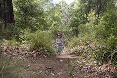 (louisa_catlover) Tags: karwarra karwarraaustraliannativebotanicgarden garden outdoor nature kalorama dandenongs melbourne victoria australia autumn portrait child family toddler daughter tabitha tabby