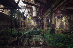 Greenworks (trip_mode) Tags: abandoned urbex decay urban exploration hall trespassing industrial architecture building derelict plant factory green nature