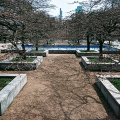 Gardens (ancientlives) Tags: chicago illinois il usa travel trips artinstitute garden walking downtown loop michiganavenue park trees nature friday april 2019 spring