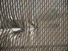 P1022378 (Claussm) Tags: vsco arizona az fence gh5 lumix