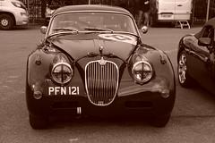 Jaguar XK150 1958, HRDC Track Day, Goodwood Motor Circuit (1) (f1jherbert) Tags: sonya68 sonyalpha68 alpha68 sony alpha 68 a68 sonyilca68 sony68 sonyilca ilca68 ilca sonyslt68 sonyslt slt68 slt sonyalpha68ilca sonyilcaa68 goodwoodwestsussex goodwoodmotorcircuit westsussex goodwoodwestsussexengland hrdctrackdaygoodwoodmotorcircuit historicalracingdriversclubtrackdaygoodwoodmotorcircuit historicalracingdriversclubgoodwood historicalracingdriversclub hrdctrackday hrdcgoodwood hrdcgoodwoodmotorcircuit hrdc historical racing drivers club goodwood motor circuit west sussex brown white sepia bw brownandwhite