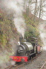 Steaming gentle (Sundornvic) Tags: steam trains locomotives welsh narrowgauge talyllyn woods forest trees green rail railway transportation heritage preservation wales snowdonia