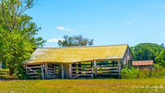 Old rustic shed inland from Port Macquarie, NSW (Peter.Stokes) Tags: australia australian awayfromitall colour colourphotography flying flyingfoxes landscape nature newsouthwales rustycrusty seenbetterdays sky vacations rusty crusty
