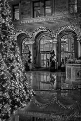 Lotte New York Palace Hotel BW (Susan Candelario) Tags: christmas christmasornament christmastree christmastreelights cities city cityscapes eastside helmsleybuilding lottenewyorkpalacehotel madisonavenue manhattan ny nyc newyork newyorkcity noel northamerica susancandelario us usa unitedstates villardhouses xmas yule yuletide architectural architecture carriage citiesatnight cityscape courtyard dusk evening garland hotel iconic illuminated landmark landmarks lapofluxury lights lit luxurious midtown midtownmanhattan modern night nighttime skyline skylines urban