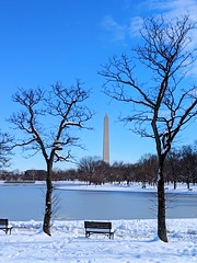 perfect seat (ekelly80) Tags: dc washingtondc january2019 winter snurlough snow snowstorm shutdown trumpshutdown snowday snowywalk white snowy nationalmall constitutiongardens seat bench view pond water frozen washingtonmonument trees framed snowcovered