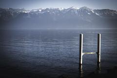 tryline (Marco - MB Photography) Tags: tryline léman cully beach lakeside sunnywinterday alps alpes alpi mountains lakegeneva lacleman lakescape xt2 xf3514r mamuangsuk