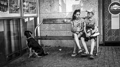Girl and a boy on a bench in Sopot, Poland 18/7 2015. (photoola) Tags: sopot street children sv poland photoola blackandwhite monochrome bench dog polska pologne polen girl boy