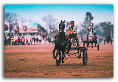 You don't take a photograph...you make it! (FotographyKS!) Tags: anseladams photography motion race horserace horseracing cart village punjab rural historical competition animal horse depthoffield capture freeze nikon nikkor shutter speed kreative art domestic sports festival activity