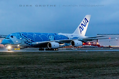 ANA_A380_JA381A_20190212_XFW-3 (Dirk Grothe | Aviation Photography) Tags: ana all nippon airways a380 ja381a turtle xfw
