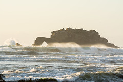 La portada de Pucatrihue (C.hess-fg) Tags: mar sea oceano olas waves chile sur sunset sun atardecer paisaje photography landscape nikon nikond5200 naturaleza nature naturelover naturephotography osorno outdoor