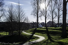 Stadswallen (Eduard van Bergen) Tags: road vista morning time water land village sun light houses trees line perspective way clouds holland tulips shoes niederlande netherlands antje frau cheese blue green woman oiseau hamlet outdoor building architecture pays bas nieuwpoort alblasserwaard molenwaard lek rijn rhine harbor dikes wall stad town stadje vesting stronghold fortress canons kanonnen fort old vintage ancient yard tree plant window manor grandchild child family nanny granny grandma girl little canon present past years existance stadswallen