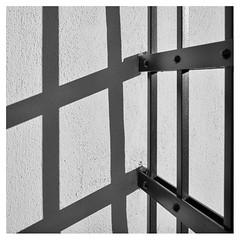 Grid (EFRH) Tags: monochrome bw shadow grid leicaq leica
