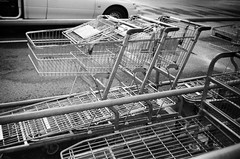 Shopping carts (Matthew Paul Argall) Tags: kodakstar500af 35mmfilm blackandwhite blackandwhitefilm ilforddelta100 100isofilm shoppingcart shoppingtrolley