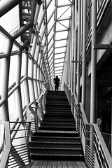 Between pipes (pascalcolin1) Tags: paris13 homme man tuyaux tubes pipes lumière light escalier stairs photoderue streetview urbanarte noiretblanc blackandwhite photopascalcolin 50mm canon50mm canon