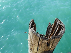 Old pier post (jamestapatio) Tags: