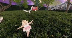 Dove (tantalize andretti) Tags: pose dove toddleedoo grass