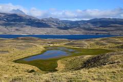 Lago Sarmiento (SilkeBritt) Tags: patagonia chile torresdelpaine