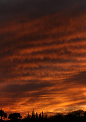 Sunset 3 5 19 #06_stitch (Az Skies Photography) Tags: sun set sunset dusk twilight nightfall sky skyline skyscape rio rico arizona az riorico rioricoaz arizonasky arizonaskyline arizonaskyscape arizonasunset cloud clouds red orange yellow gold golden salmon black march 5 2019 march52019 3519 352019 canon eos 80d canoneos80d eos80d canon80d panorama