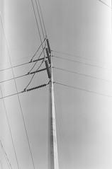 000940410005 (alexdotbarber) Tags: 1125 120 6x12 htx houston houstonfourthward kodaktrix400 polaroid110b polaroidconversion analog blackandwhite blackandwhitenegative f11 infinityfocus mediumformat