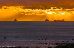 Crowded (FotoRoar2013) Tags: 2018 solastrand solnedgang februar fotoroar2013 farger canon 5dmk3 norway norwegen noruega norge norvegia norwege norvege sea sunset ship
