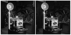 Crown Graphic in 3D Parallel View (Howard Sandler (film photos)) Tags: graflex crowngraphic vintage camera blackandwhite 3d stereo stereoscopic parallel walleye