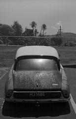 Citroen DS (Haruhara_Izzy) Tags: ilford id11 fuji gs645 bw film canoscan citroen ds wellington