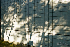 Shadow of Akita City Central Library Meitokukan (秋田市立中央図書館明徳館) (christinayan01 (busy)) Tags: akita japan architecture building library perspective